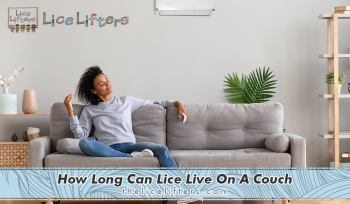 How Long Can Lice Live On A Couch 2020
